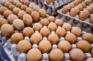 Eggs_compressed